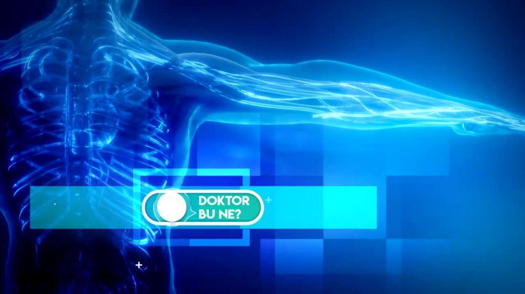 Doktor Bu Ne  - 1.Bölüm Alev Güner -  Beyin ve Sinir Sistemi