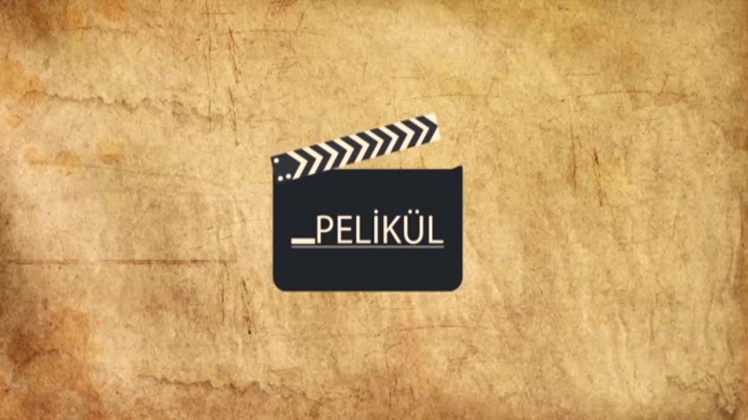 Pelikül - 1.Bölüm